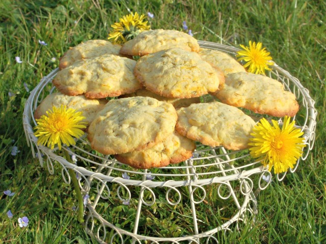 dandelion-and-lemon-biscuits