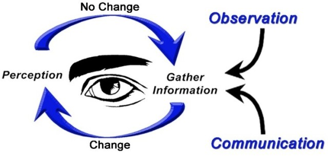 6mfs-situational-awareness-cycle.jpg